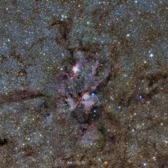 Nebulosa aragosta