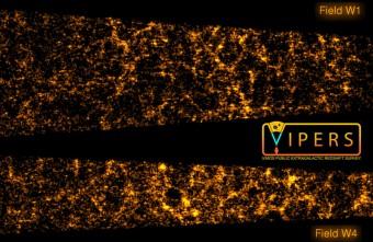 """La distribuzione nello spazio delle 55.000 galassie che compongono l'attuale campione PDR-1 della survey VIPERS. Le due """"fette"""" di torta corrispondono ai due campi W1 e W4 in cui sono state compiute le misure.  L'osservatore in questa immagine è situato al vertice immaginario dei due pseudo-coni, fuori dallo schermo a destra dell'immagine.  La dimensione delle fette in lunghezza corrisponde a 6 miliardi di anni luce riportati all'epoca attuale.  Crediti: © VIPERS Collaboration"""