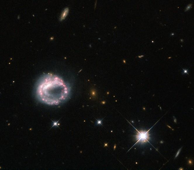 La galassia ad anello Zw II 28 con i suoi colori scintillanti. CREDIT: ESA/Hubble & NASA