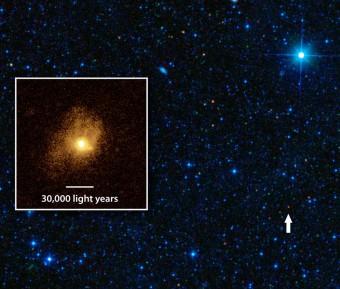 SDSSJ1506+54, la galassia più efficiente che si conosca, è quel piccolo puntino rosso (indicato dalla freccia) visibile in quest'immagine ottenuta dal Wide-field Infrared Survey Explorer della NASA (WISE), il telescopio spaziale che per primo l'ha individuata. Il dettaglio presente nel riquadro è invece opera di Hubble. Crediti: NASA/JPL-Caltech/STScI/IRAM