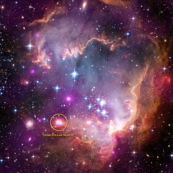 Crediti: X-ray: NASA/CXC/Univ.Potsdam/L.Oskinova et al; Optical: NASA/STScI; Infrared: NASA/JPL-Caltech