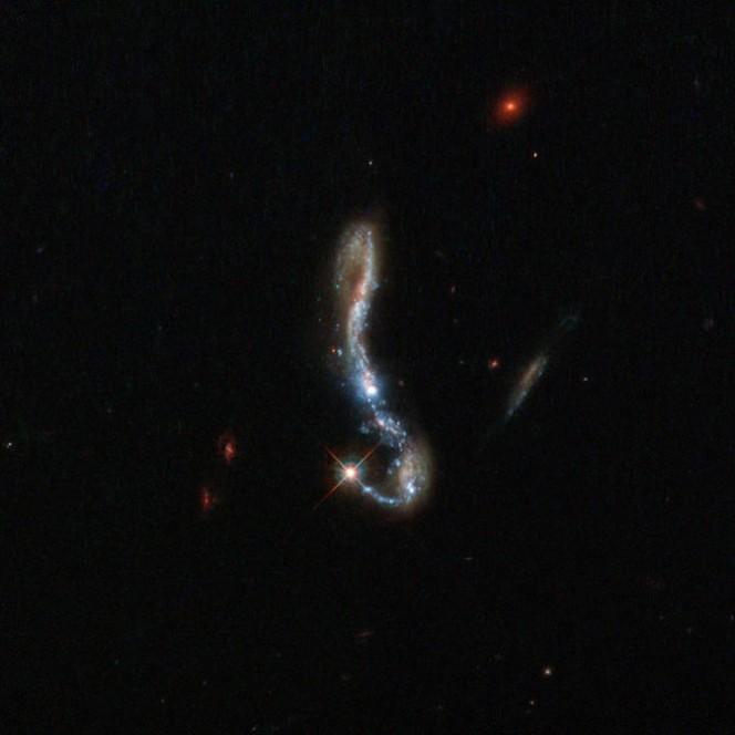 La galassia Starburst J082354.96 ripresa dal telescopio della Nasa Hubble. CREDIT: ESA/Hubble and NASA