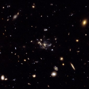 Il cosiddetto Spiderweb, composto da una galassia centrale circondata da centinaia di altri ammassi di stelle giovani e in formazione, ripreso dal telescopio spaziale Hubble.Crediti: NASA, ESA, George Miley and Roderik Overzier (Leiden Observatory)