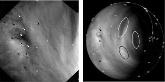 Esempi di tracking di nuvole su Venere (from Khatuntsev et al, Cloud level winds from the Venus Express Monitoring Camera imaging, Icarus (2013); doi: 10.1016/j.icarus.2013.05.018)