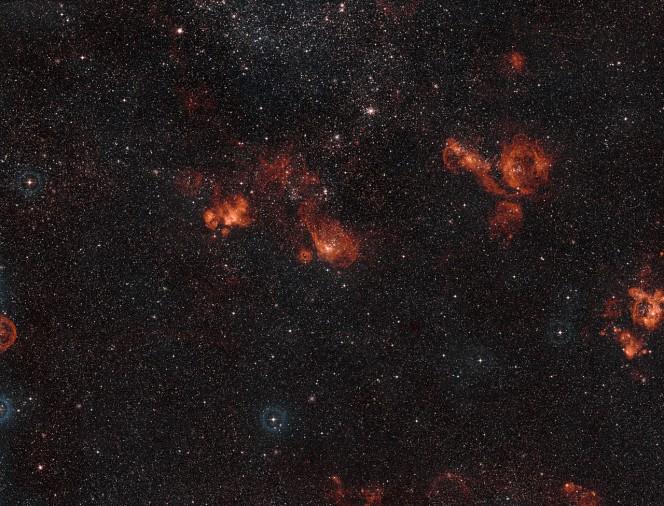 Ampio campo di vista di NGC 2014 e NGC 2020 nella Grande Nube di Magellano