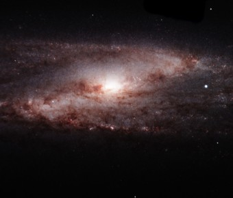 Galassia a spirale NGC 253