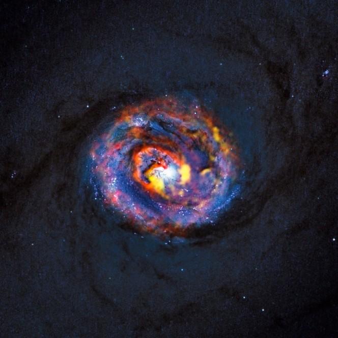 La parte centrale della vicina galassia attiva NGC 1433. L'immagine di fondo, blu e debole, che mostra le fasce di polvere al centro della galassia, è stata ottenuta dal Telescopio Spaziale Hubble della NASA/ESA. Le strutture colorate vicino al centro provengono da recenti osservazioni con ALMA. (Crediti: ALMA (ESO/NAOJ/NRAO)/NASA/ESA/F. Combes)
