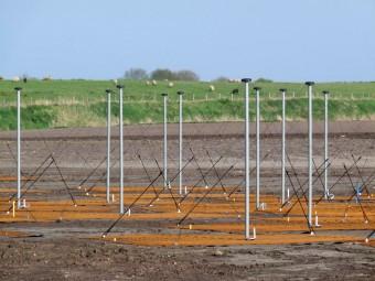 Alcune delle antenne a bassa frequenza di LOFAR