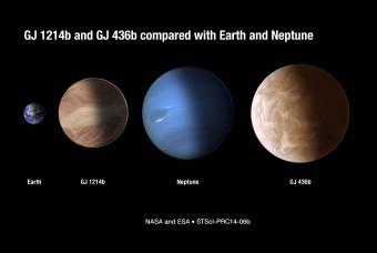 Le dimensioni di GJ 1214b e di GJ 436b rispetto a quelle della Terra e di Nettuno. Crediti: NASA & ESA, STScI-PRC14-06b