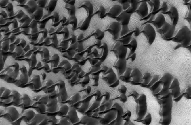 Dune barcane che si sovrappongono. Crediti: NASA/JPL-CALTECH/UNIVERSITY OF ARIZONA