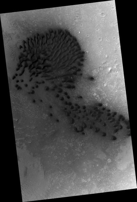 Le dune nella regione Cerberus. Immagine non colorata e modificata. Credit: NASA/JPL/University of Arizona