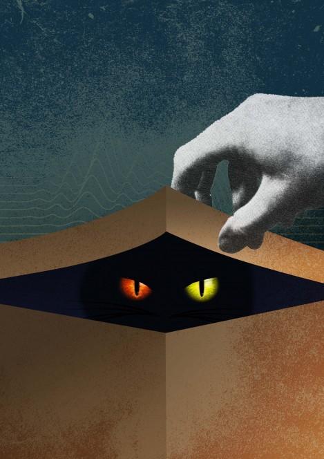 Il gatto di Schrödinger. Crediti: FOM.
