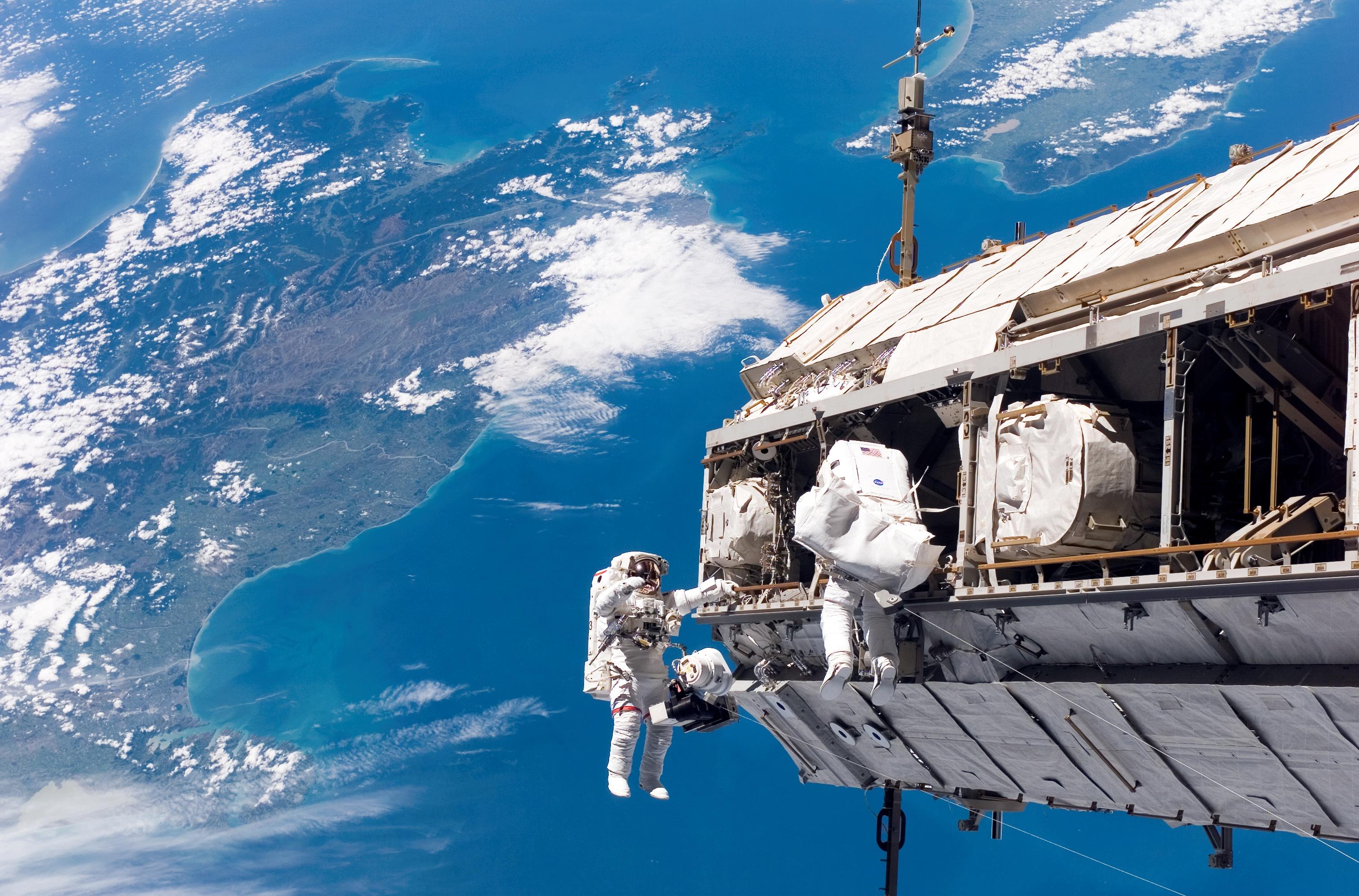 Il cuore tondo degli astronauti   MEDIA INAF