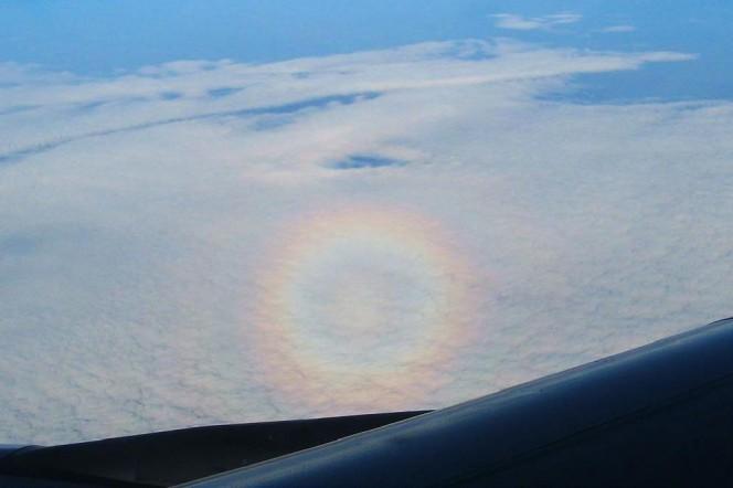 Una gloria terrestre vista dall'aereo. Crediti: Earth Science Picture of the Day/Raquel Yumi Shida.