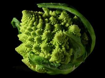 La forma frattale di un broccolo romanesco