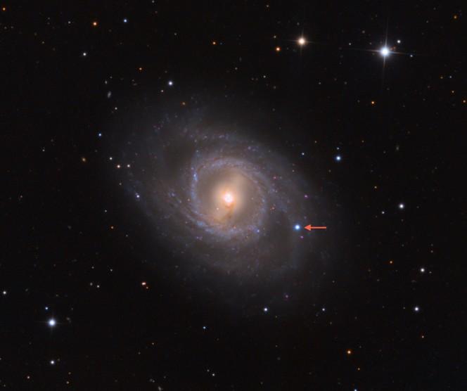 La galassia M95 distante circa 40 milioni di anni luce