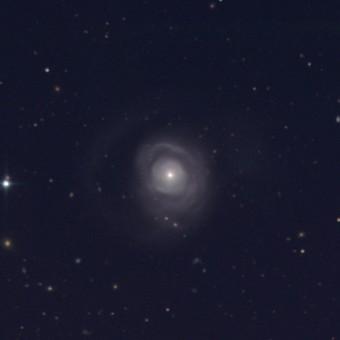 Immagine della galassia NGC 5548 taken ripresa dal telescopio da 1,3 metri dell' MDM Observatory. Crediti: Dr. Misty Bentz