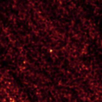 Immagine dell'asteroide 2011 MD (al centro) ripresa dal telescopio spaziale Spitzer nel febbraio 2014. Crediti: NASA