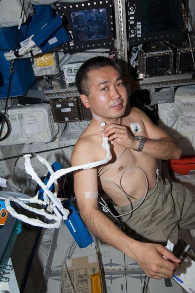 L'astronauta della JAXA  Koichi Wakata, ingegnere per l'Expedition 38, dimostra l'utilizzo dell'ecografia per raccogliere i dati nell'indagine Cardio Bue. Crediti: NASA
