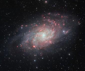 La galassia a spirale M 33, anche nota come Galassia del Triangolo o Galassia Girandola, ripresa dal telescopio VST. Le nubi rossastre presenti in corrispondenza dei bracci a spirale sono zone dove si stanno formando nuove stelle. Crediti: ESO