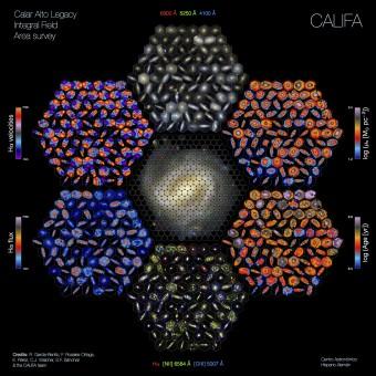 La figura riassume le vastissime potenzialità della survey CALIFA. Al centro si vede come l'immagine di una galassia viene decomposta in un gran numero di regioni, la cui luce viene portata allo spettrografo PMAS-PPAK da fasci di fibre ottiche, per poi essere scomposta nelle diverse lunghezze d'onda. I contorni esagonali riproducono il campo di vista dello strumento. Nell'esagono superiore al centro sono riprodotte le immagini a colori di alcune galassie osservate da CALIFA: si riconoscono le svariate morfologie (spirali, ellittiche e irregolari) che compongono il campione studiato. Negli altri esagoni sono riprodotte le mappe delle proprietà fisiche derivati dagli spettri ottenuti regione per regione. Le varie mappe si corrispondono in tutti gli esagoni. Crediti: R. Garcia-Benito, F. Rosales-Ortega, E. Pérez, C.J. Walcher, S. F. Sanchez and the CALIFA team