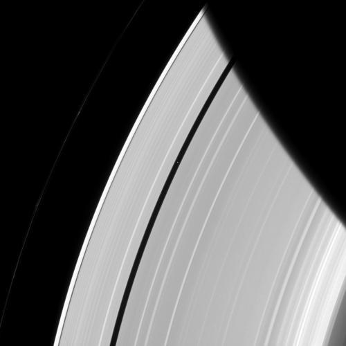 Ben visibile la fascia di vuoto nella quale orbita Pn, il piccolo puntino che potete individuare nella striscia di vuoto tra gli anelli.  Credit: NASA/JPL-Caltech/Space Science Institute