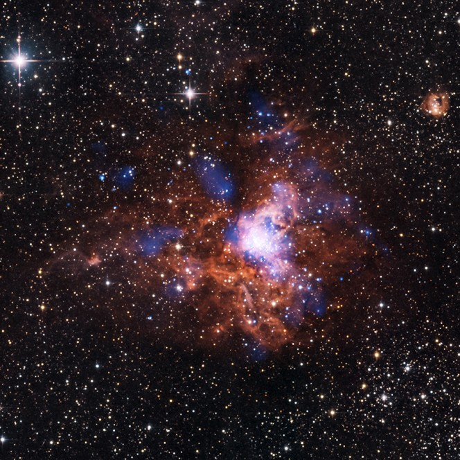 Un giovane cluster stellare a 5,500 anni luce dalla Terra. RCW 38 visto ai raggi X e all'infrarosso. Crediti: X-ray, NASA/CXC/ESA-ESTEC/E.Winston et al, Near-IR: 2MASS/UMass/IPAC-Caltech/NASA/NSF; Infrared, NASA/JPL-Caltech
