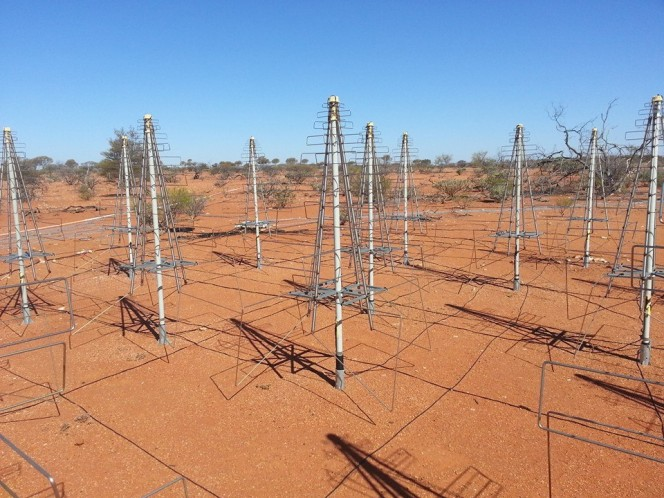 Le antenne Low Frequency Aperture Array in Western Australia. Crediti: INAF