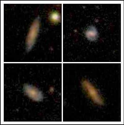 Immagini ottiche di 4 delle galassie molto ricche in idrogeno atomico osservate dal radio telecopio di Arecibo (Credit: SDSS)
