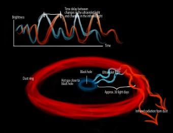 Quando il gas cade verso il buco nero, esso viene riscaldato ed emette radiazione ultravioletta. La radiazione ultravioletta riscalda la nube di polvere a forma di disco che orbita attorno al buco nero ad una certa distanza e questo fa sì che la nube di polvere emetta radiazione infrarossa. Utilizzando i telescopi terrestri, ora è possibile il ritardo temporale tra la luce emessa dal buco nero e quella emessa dal disco di polvere, che è pari a 30 giorni. Credit: Marie Dyekjær Eriksen