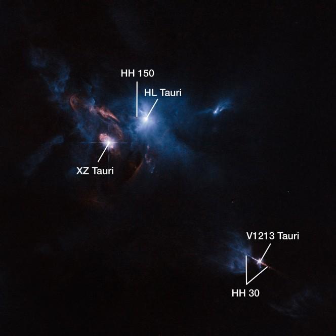 Il telescopio di NASA/ESA Hubble ha scattato questa suggestiva immagine del sistema stellare multiplo chiamato XZ Tauri, circondato dal sistema HL Tauri (osservato da ALMA) e da altre giovani stelle vicine. Da XZ Tauri parte una bolla calda di gas che si espande nello spazio circostante, denso di zone luminose che emettono forti venti e getti di materiale. Questi oggetti illuminano l'intera regione. Credit: ESA/Hubble and NASA Cortesia: Judy Schmidt