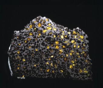 Il meteorite Esquel. Le tracce di magnetismo presenti nei metalli che lo compongono è stato utilizzato per studiare la formazione di corpi planetari 4,6 milardi di anni fa, all'alba del Sistema solare. Crediti: Natural History Museum, Londra
