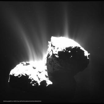 Ripresa da 30 km della cometa 67P ottenuta il 22 novembre 2014. Il nucleo è volutamente sovraesposto per evidenziare i getti dovuti alla sublimazione. Crediti: ESA/Rosetta/MPS for OSIRIS Team MPS/UPD/LAM/IAA/SSO/INTA/UPM/DASP/IDA