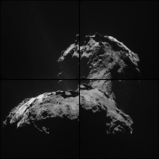 Collage di 4 immagini della cometa scattate dallo strumento NAVCAM a bordo di Rosetta il 6 gennaio 2015. Crediti: ESA/Rosetta/NAVCAM – CC BY-SA IGO 3.0