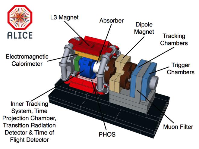 ALICE è ottimizzato per lo studio delle collisioni tra ioni pesanti.