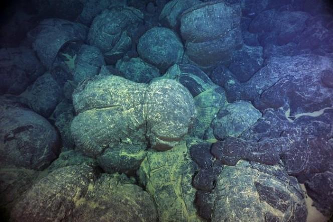 Lave a cuscino (magma congelato) sul Juan De Fuca Ridge, al largo della costa pacifica nord occidentale degli Stati uniti. Un nuovo studio mostra come le eruzioni avvengano seguendo un'inaspettata regolarità. Crediti: Deborah Kelley / University of Washington.