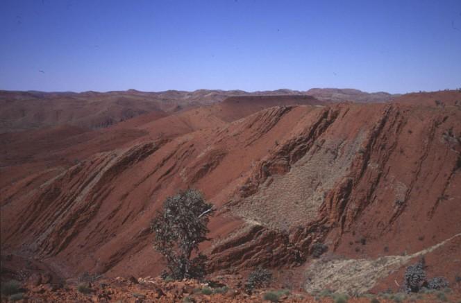 I campioni più antichi sono stati raccolti nel deserto del Northwestern Australia e risalgono a 3,2 miliardi di anni fa. Crediti: R. BUICK / UNIV. OF WASHINGTON