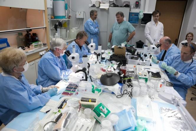 Il team di ricercatori che ha lavorato allo studio. Crediti: Michael Delp