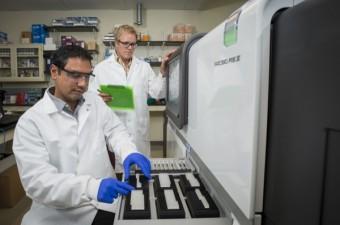 Chandran Sabanayagam e Bruce Kingham al lavoro con i vermi destinati alla Stazione spaziale. Crediti: University of Delaware