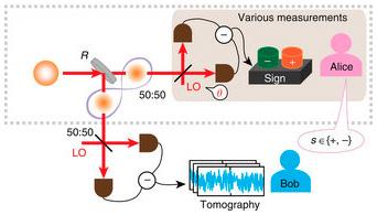 """Rappresentazione schematica dei due """"laboratori"""" dell'esperimento.  Crediti; Nature Communication"""