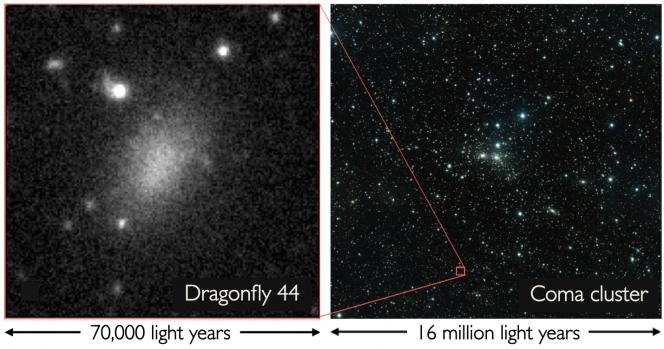 """Una serie di """"blob"""" non identificati erano stati scoperti nell'Ammasso della Chioma. Uno di questi misteriosi oggetti, Dragonfly 44, è stato studiato in dettaglio, confermando che si tratta di una galassia ultra diffusa. Crediti: Credit: P. van Dokkum, R. Abraham, J. Brodie"""