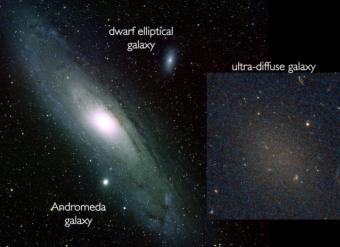 Una galassia ultra diffusa (UDG), Dragonfly 17, confrontata in scala con altri tipi di galassie. Le UDG possiedono lo stesso numero di stelle rispetto alle ellittiche nane (come NGC 205, in alto nell'immagine), ma sparse in una regione molto più ampia. Crediti: B. SCHOENING, V. HARVEY/REU PROGRAM/NOAO/AURA/NSF, P. VAN DOKKUM/HUBBLE SPACE TELESCOPE.