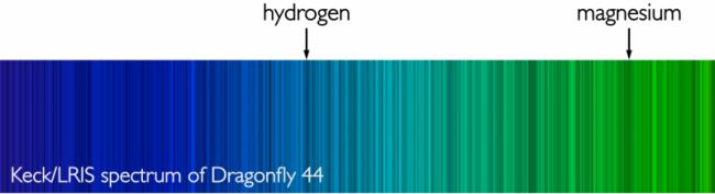 Spettro della luce proveniente dalla galassia ultra diffusa Dragonfly 44. Le bande scure (righe di assorbimento) rivelano la composizione chimica e l'età delle stelle, nonché la distanza della galassia.  Crediti: P. VAN DOKKUM, A. ROMANOWSKY, J. BRODIE