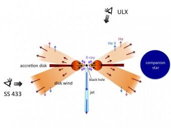 Immagine schematica delle ULX (guardando il sistema dall'alto) e di SS433 (con l'osservatore dal lato sinistro). Crediti: Kyoto University