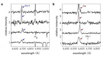 Spettri ottici delle quattro ULX osservate con il telescopio Subaru (da sopra a sotto: Holmberg II X-1, Holmberg IX X-1, NGC 4559 X-7, NGC 5204 X-1). He II e Hα indicano rispettivamente le righe spettrali degli ioni di elio e degli atomi di idrogeno. Crediti: Kyoto University