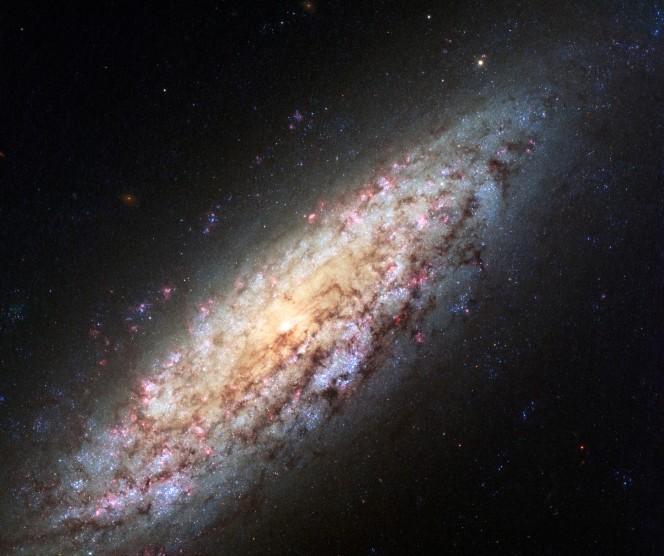 Questa immagine ripresa da Hubble Space Telescope di ESA e NASA riprende la galassia NGC 6503 ai bordi del vuoto locale
