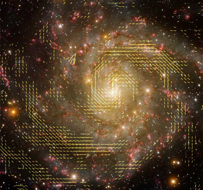 Immagine combinata di dati radio e ottici della galassia IC 342, ottenuta utilizzando i dati del VLA e del radiotelescopio di Effelsberg. Le linee indicano l'orientamento dei campi magnetici nella galassia. Crediti: R. Beck, MPIfR; NRAO/AUI/NSF; grafica: U. Klein, AIfA; Background; immagine: T.A. Rector, University of Alaska Anchorage e H. Schweiker, WIYN; NOAO/AURA/NSF