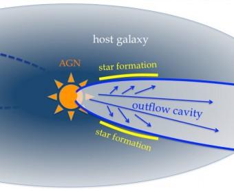 Illustrazione del modello di vento galattico costruito a partire dalle osservazioni SINFONI/VLT ed HST del quasar XID2028: il vento scava una cavità nelle regioni di formazione stellare della galassia in cui risiede il quasar, fermando la formazione stellare stessa e rinvigorendola solo ai bordi della cavità (da Cresci et al. 2015)
