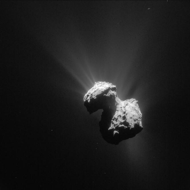 La cometa 67P/C-G fotografata lo scorso 7 luglio. Crediti: ESA/Rosetta/NAVCAM – CC BY-SA IGO 3.0