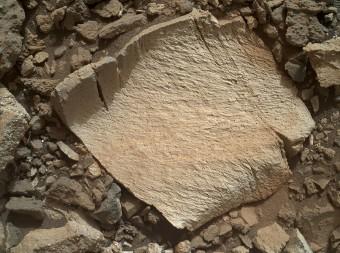 """Un frammento di roccia ribattezzato """"Lamoose"""", di circa 10 cm, ripreso dalla camera MAHLI del rover Curiosity l'11 luglio 2015. Come la vicina roccia """"Elk"""", possiede un'inaspettatamente alta concentrazione di silice. Crediti: NASA/JPL-Caltech/MSSS"""